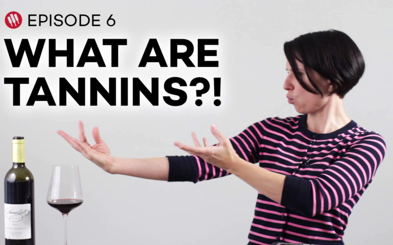 What Are Wine Tannins? – Wine 101 Videos (Ep. 6)