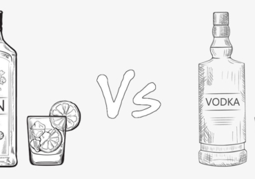 Know the Difference Between Vodka and Gin