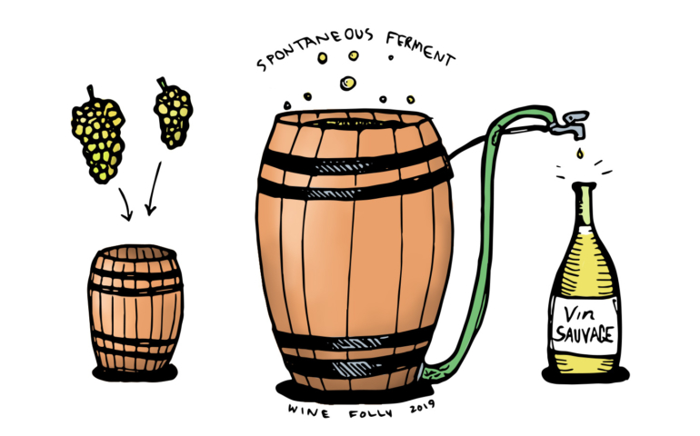 What's Up With Wild Fermentation in Wine?