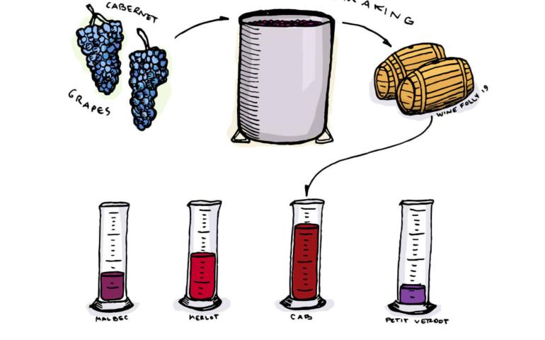 Wine Blending – Why Certain Grapes Are Blended