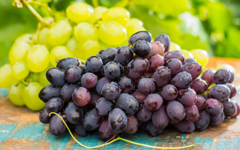 Growing Organic Wine Consumption Will Reach 87.5 Million Cases by 2022