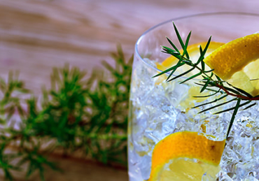 9 Gins For Gin Haters