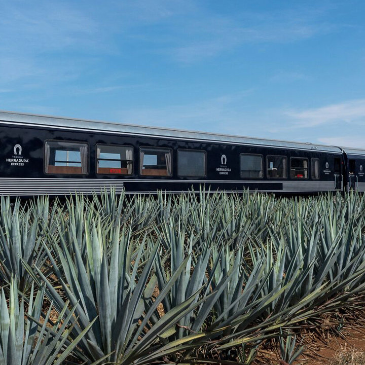 Embark on These 3 Distillery Train Excursions, No Chugging Required