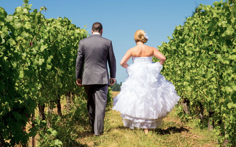 The Winery Wedding Industrial Complex Doesn't Care if You Have Objections