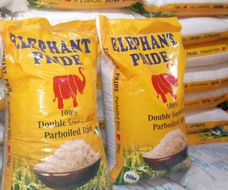 Elephant Pride