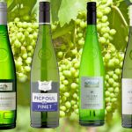 picpoul-white-wine-indybest