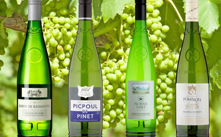 9 Best Picpoul Wines To Drink With Seafood This Summer