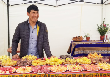 The Peruvian Farmer Crafting 'Wine' From High-Altitude Heirloom Potatoes