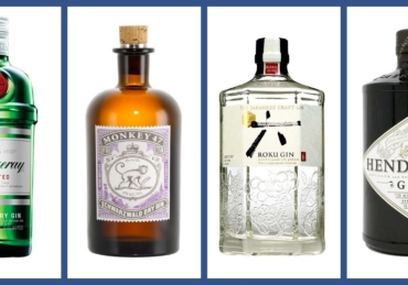 Top 10 Gin Brands Under ₦5,000 In Nigeria