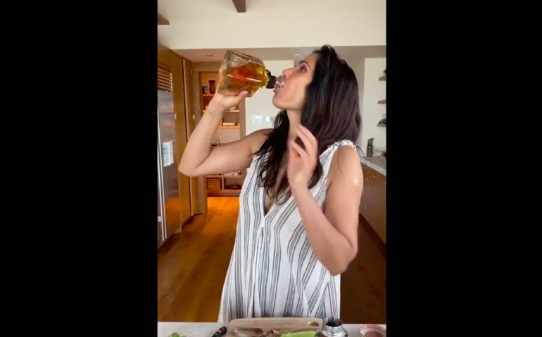 Padma Lakshmi Back To School Cocktail Tutorial Takes A Serious Turn