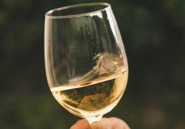 Why Chardonnay Fans Should Consider Godello