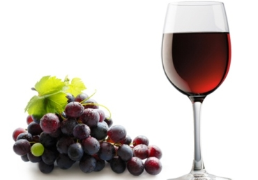 5 Keys Stages of Making Wine
