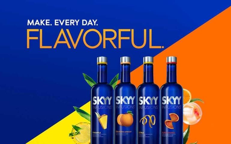 Skyy Vodka Prices Guide 2020