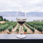 Australian-Wine_2