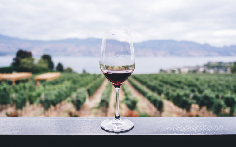 Top 10 South African Wines 2020