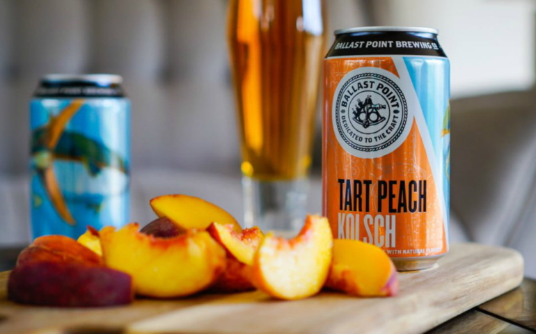 10 Best Fruit Flavors For Beer