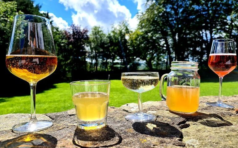 Discover Cider Campaign Launched to Celebrate British Cider